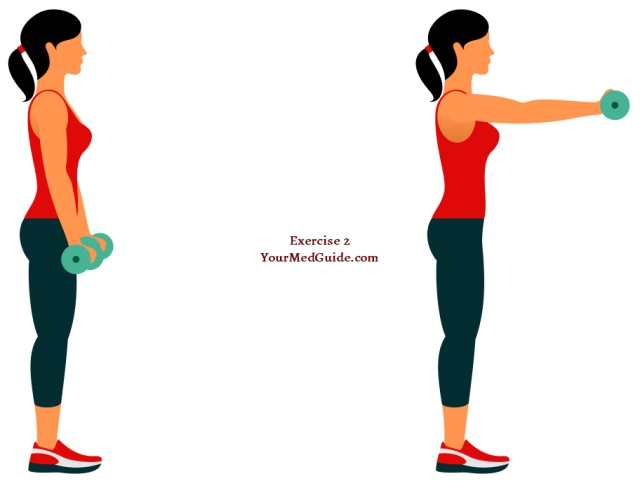 Exercise 2 shoulders chest and back