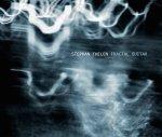 stephan thelen - fractal guitar
