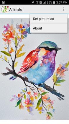 watercolorwallpapersapp11