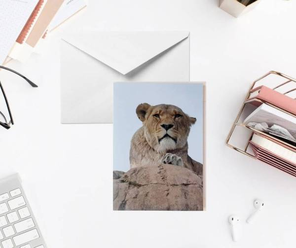 Lioness Greeting Card by Yours Faithfully Hannah Kirk