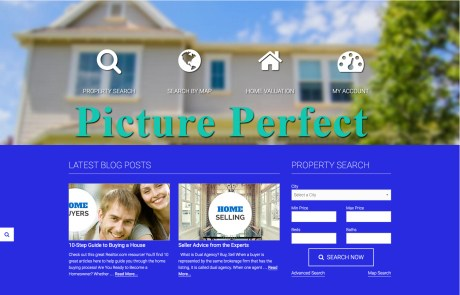 Picture Perfect WordPress Theme by Agent Evolution