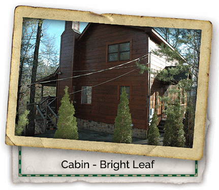 Cabin-Headers-Bright-Leaf