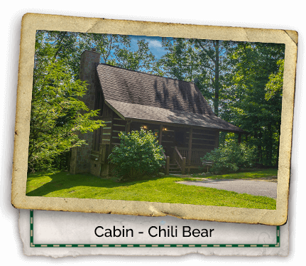 Cabin-Headers-Chili-Bear