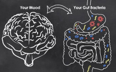 Why the Gut-Brain Connection Keeps You Happy