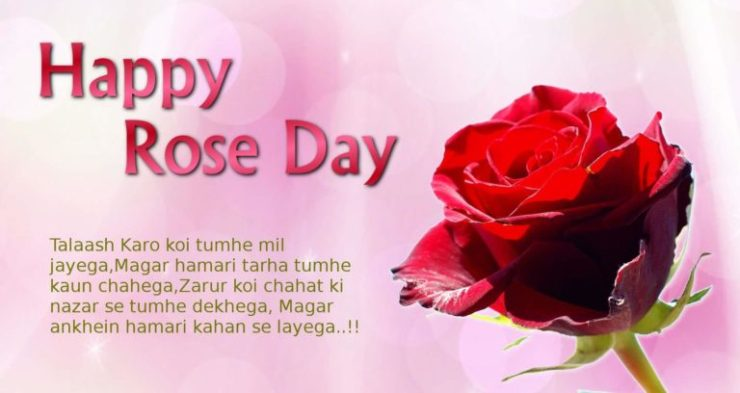 Happy Rose Day greeting