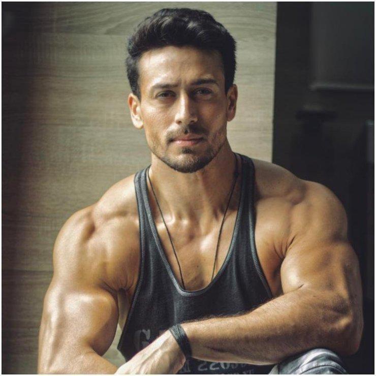 Tiger Shroff biceps