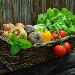 paniers de saison fruits et légumes bio soins naturopathie nature ferme bio yourte végétale saint françois longchamp savoie bien être