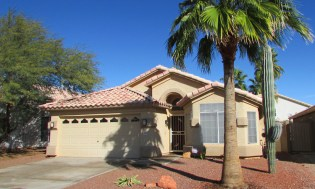 Front of home with desert landscaping, palm tree and tall saguaro cactus - 4446 E Desert Wind Dr, Phoenix / Ahwatukee AZ - Single Level home for rent - Bill Salvatore, Arizona Elite Properties -602-999-0952 - Elite Property Management