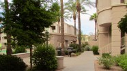 Nice level concrete walkways, nicely landscaped complex - 5303 N 7th St, Phoenix AZ - Well cared for complex - Bill Salvatore, Arizona Elite Properties 602-999-0952 - Arizona Real Estate