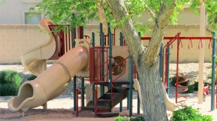slides, tunnels, jungle gyms and climbing areas in neighborhood tot lot - 1795 W Gold Mine Way, Queen Creek, Arizona 85142 - Well kept neighborhood play areas - Bill Salvatore, Arizona Elite Properties 602-999-0952 - Arizona Real Estate