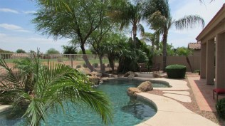 View of random shape swimming pool through palm trees - Pebble Tec Pool - 1205 S Sandstone Street, Gilbert AZ 85396 - Western Skies Golf Community - Bill Salvatore, Arizona Elite Properties 602-999-0952 - Arizona Real Estate