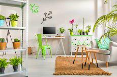 White room with plants on shelving, simple desk and neutral mat - house plants, indoor gardening, interior design - Bill Salvatore, Arizona Elite Properties 602-999-0952 - Arizona Real Estate