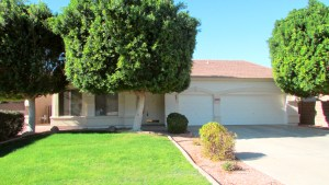 Single Level Home with grassy front yard and large shade trees - 1162 S Sandstone St, Gilbert AZ - Bill Salvatore, Arizona Elite Properties 602-999-0952 - Arizona Real Estate