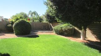 good sized back yard with greenery and shade trees - Large Lot, Landscaped Back Yard - 1162 S Sandstone St, Gilbert AZ - Bill Salvatore, Arizona Elite Properties 602-999-0952 - Arizona Real Estate