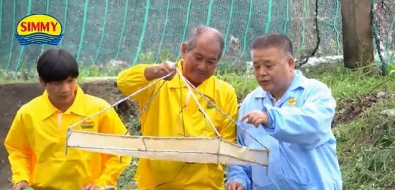 陳信銘 信海水產 白蝦幼苗