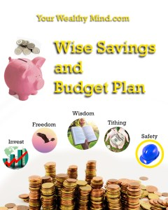 Your Wealthy Mind Savings and Budget Plan