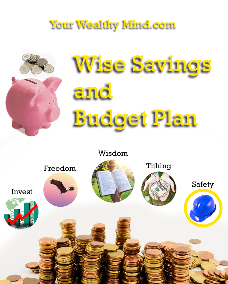 Your Wealthy Mind Wise Savings and Budget Plan