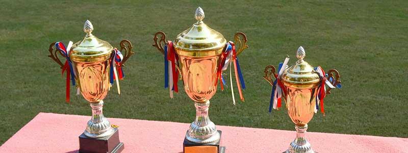 Prize Trophy for Goals