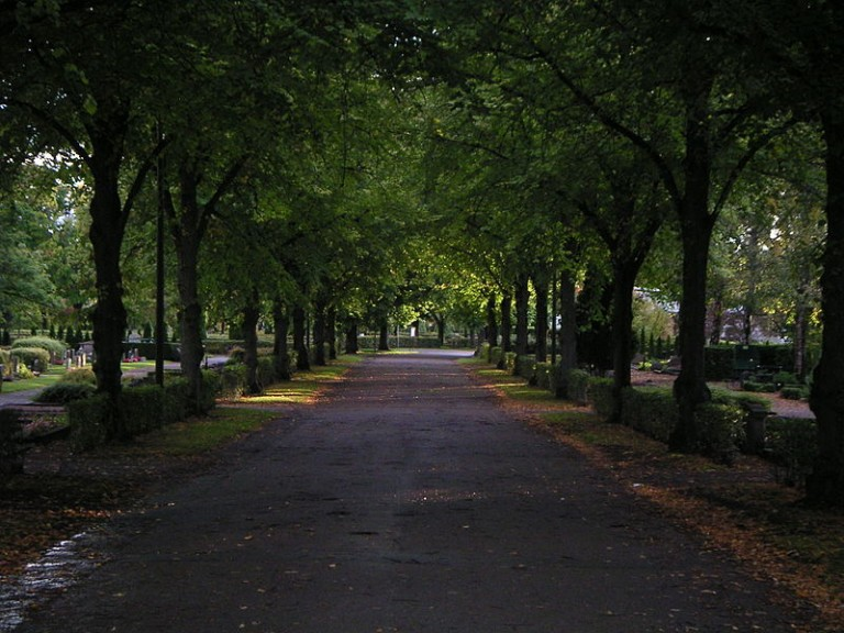800px-Allée_in_Uppsala_old_cemetery