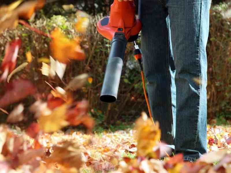 how to rake leaves without a rake, How To Rake Leaves Without a Rake!