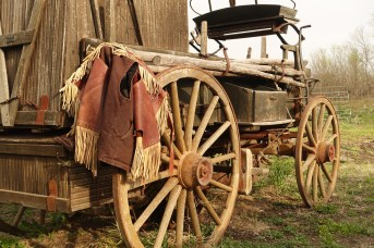 Flying W Ranch buggy