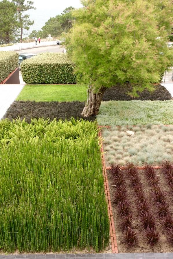 La Coorniche landscaping