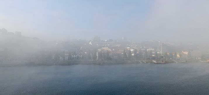 Gaia Porto in fog