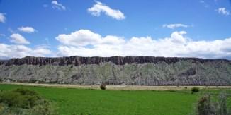 Ruta 33 Altiplano Salta goat mountain ridge