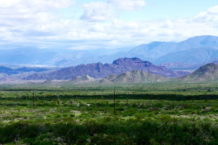 Ruta 40 Salta Argentina valley