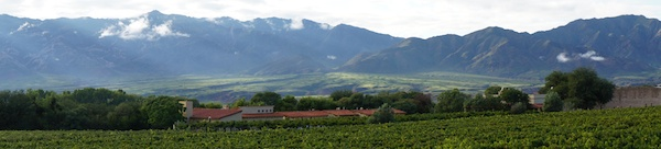 Colomé vineyards panorama