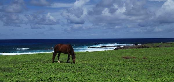 FERNANDO BEACHES 3