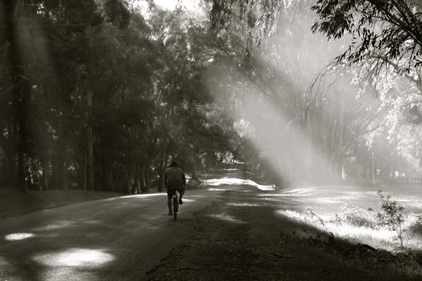 Carmelo highway