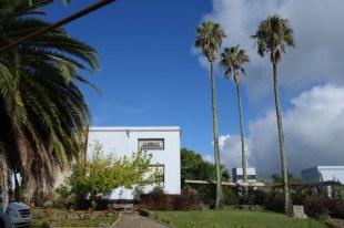 Narbona Wine Lodge palm trees