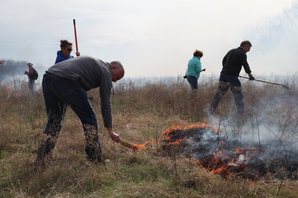 Flying W Ranch raking fire