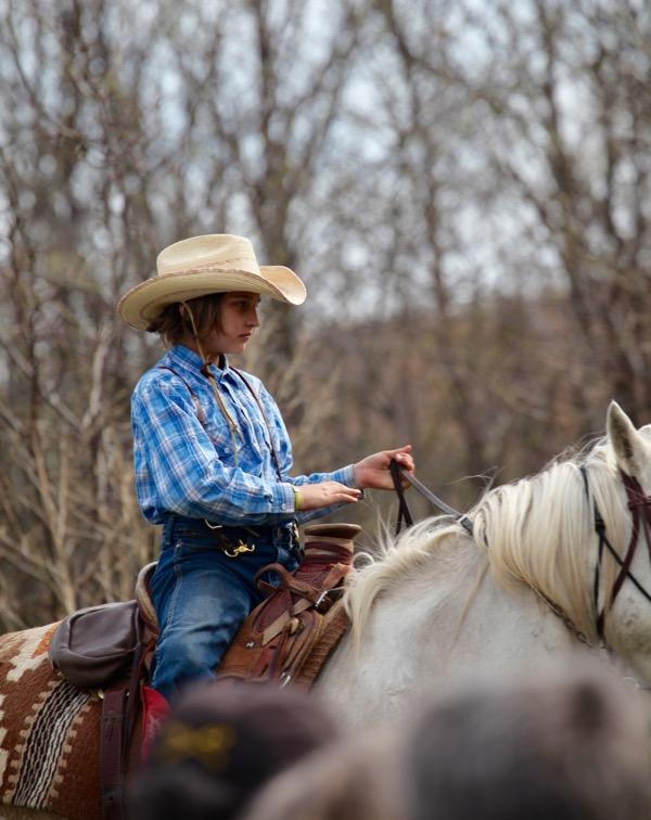 Flying W Ranch Josie Hoy horse