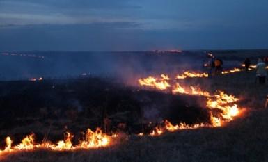 Flying W Ranch zig zag flames