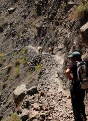 Toubkal path rush hour