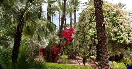 Jardin Majorelle colors