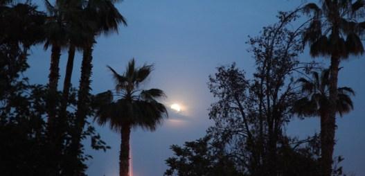 Marrakesh full moon