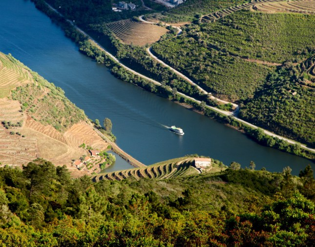 Douro Valley boat on river