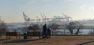 River Elbe park view cranes
