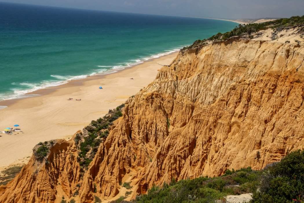 Fossil da Galé cliffs