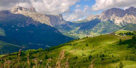 Col Alt views