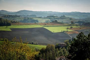 Monforte d'Alba plowed field