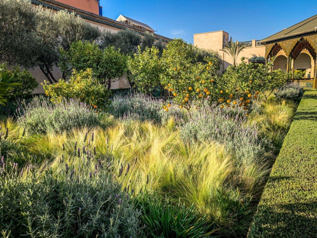 Le Garden Secret green plantings