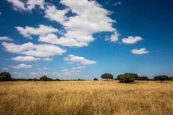 Sao Lourenco do Barrocal blue skies