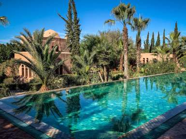 Le Jardin des Douars pool and palm trees