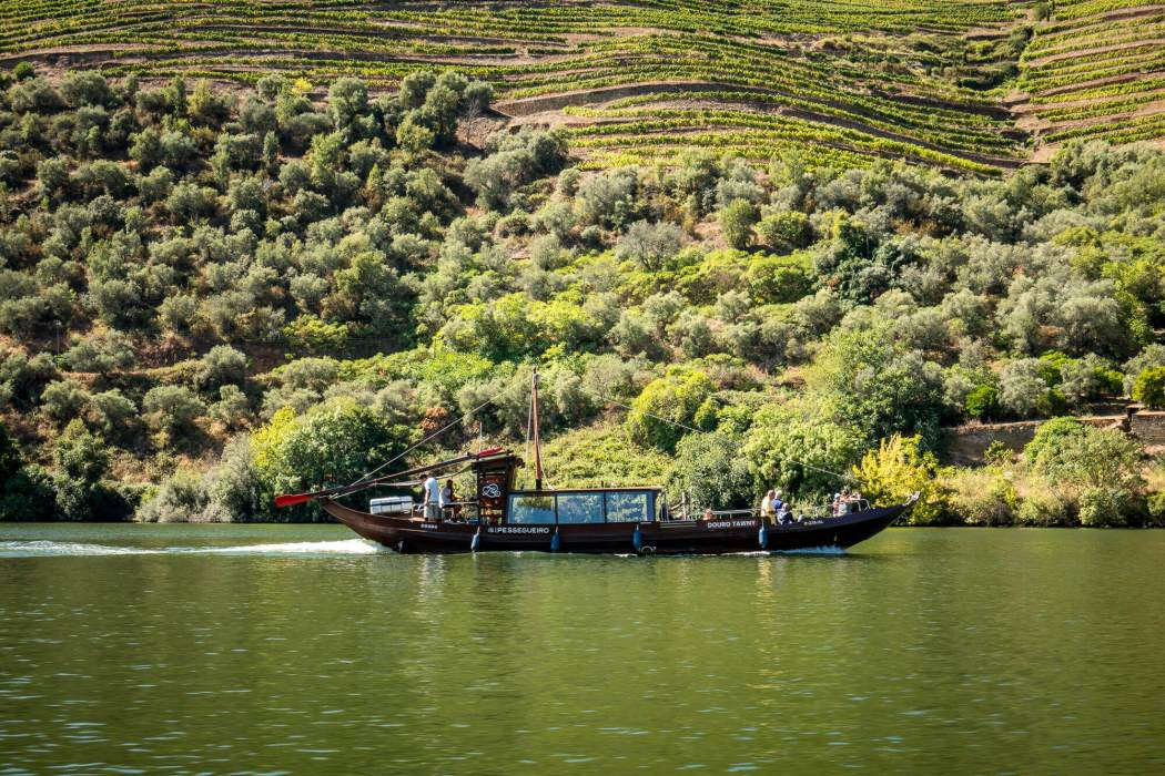 Douro Exclusive Boat ride