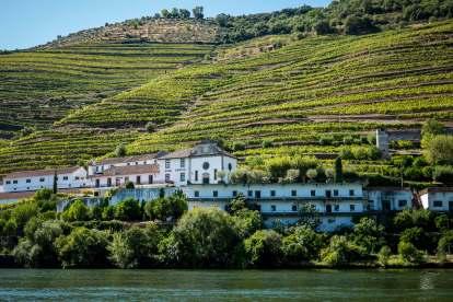 Douro Exclusive river boat tour