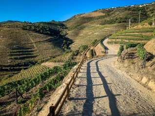 main road Vila Gale Douro